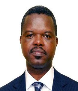 Mr. Adeola Olusodo, AMNIM
