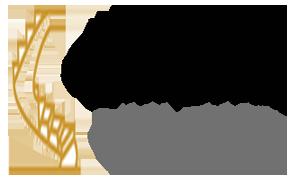 Step Development